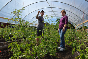 High tunnels create microclimates for specialty crops