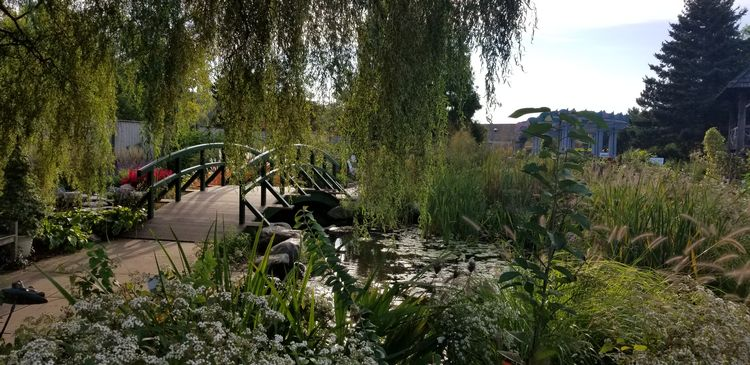 Monet Bridge at the MSU 4-H Children's Garden.