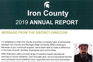 Iron County Annual Report: 2019