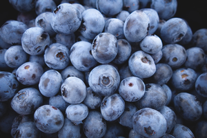 Register now for pre-bloom blueberry webinar on May 12