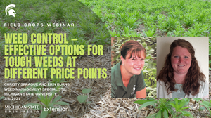 Field Crops Webinar Series addresses effective weed control options and their economics on March 8