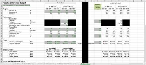 An excel sheet of the budget tool
