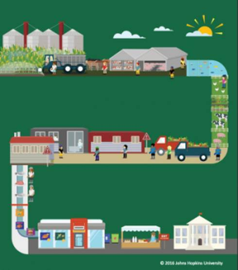 Illustration of the path of food from the farm to the consumer.