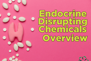 Endocrine Disrupting Chemicals – Overview