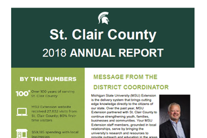 Cover of St. Clair County Annual Report 2018