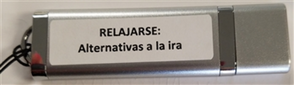 Alternativas a la Ira curriculum flashdrive.