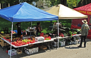 Why you should consider shopping at a farmers market