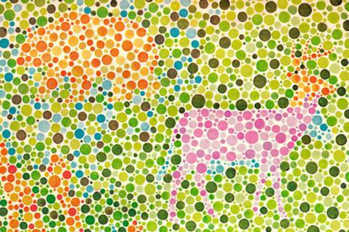 Image that shows whether you're colorblind
