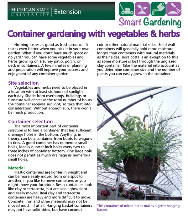 Container Gardening With Vegetables Herbs Tip Sheet Msu Extension