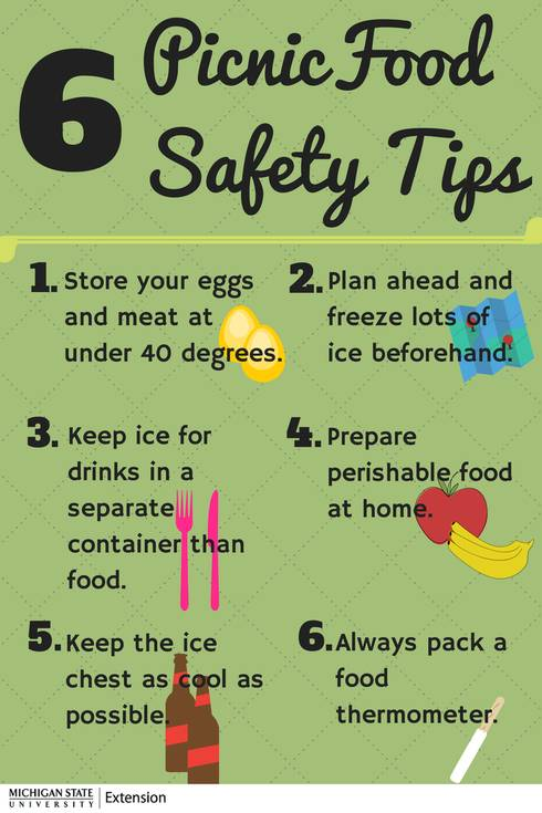 six tips to keep your food safe during picnics and camping trips
