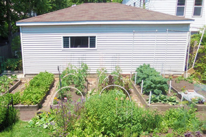 Choosing a smart site for your vegetable garden