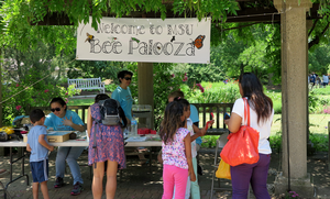 Celebrate the bees at our annual Bee Palooza