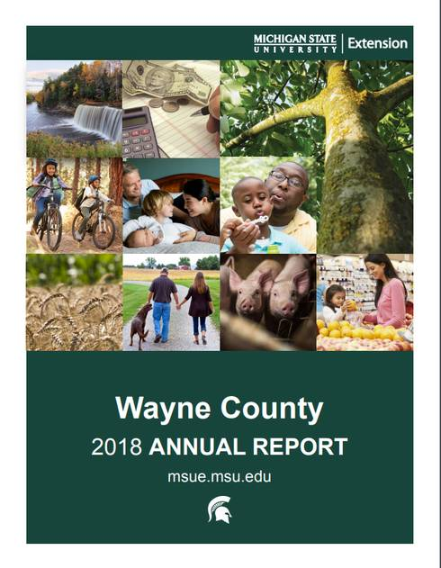 Cover of the 2018 Wayne County Annual Report