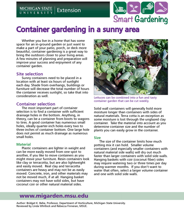 Container Gardening In A Sunny Area Tip Sheet Msu Extension