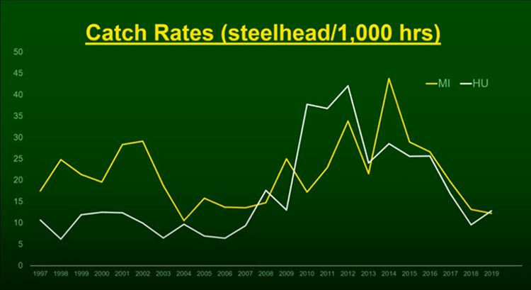 Catch rates for steelhead in Lake Michigan and Lake Huron are shown in a line graph indicating that both have been trending downward over the past several years.