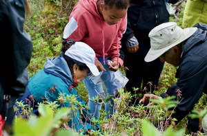 Alaska Native Haida community members look at plants.