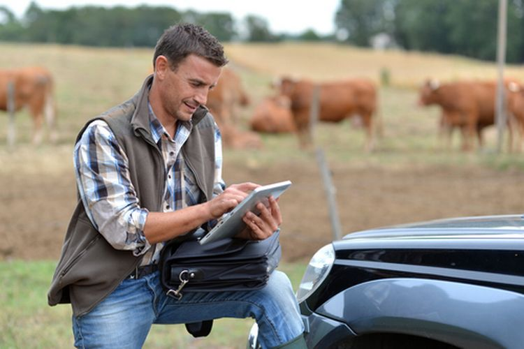 A young farmer looking at a tablet with a field in the background.