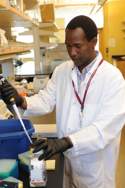 Duncan Gitonga Ithinji, a BHEARD Scholar from Kenya and Washington State University graduate student is working to produce particles that could immunize plants against multiple viruses.