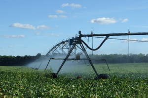 Irrigator in field