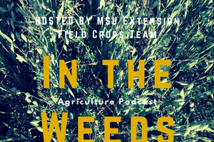 In the Weeds podcast on upgrading your cropping system