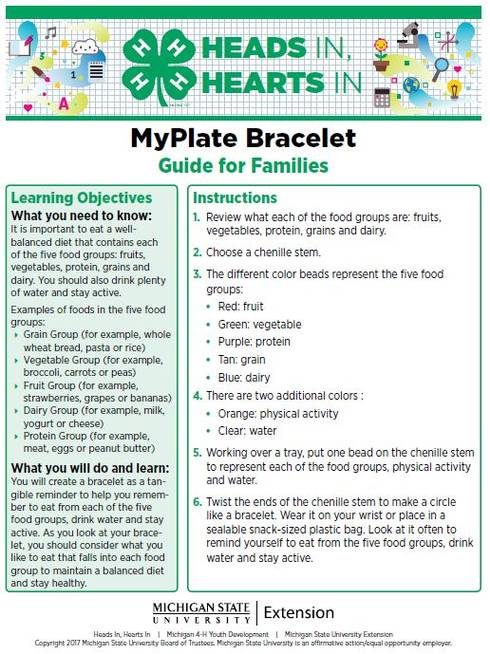 MyPlate Bracelet cover page.