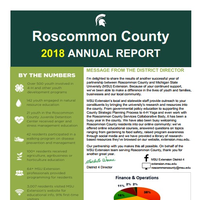 Roscommon County Annual Report 2018 Cover