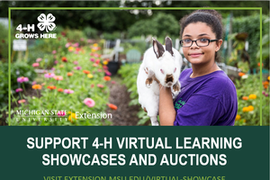 Support Michigan 4-H and purchase locally sourced protein and crafts through virtual auctions