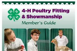 4-h youth development 4-h poultry education store purdue.
