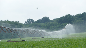 Irrigation uniformity check: Taco Bell or eye in the sky?