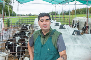 Enhancing dairy farm performance through a focus on calf health
