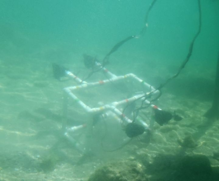 Underwater ROV in action.