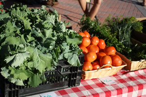 Food and Farm Business Sales Channel Deep Dives: Farmers Markets