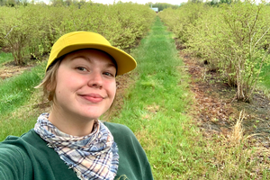 Jenna Walters' research explores impacts of extreme heat on blueberry pollination