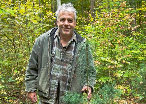 Mike Walters, MSU forest ecologist, is conducting research to find ways to diversity Michigan forests