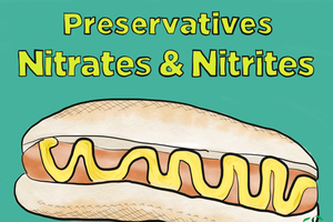 Preservatives – Exploring nitrate & nitrite safety