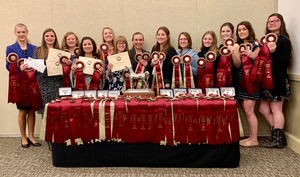 Arabian Nationals horse judging contest results in big successes for Michigan teams