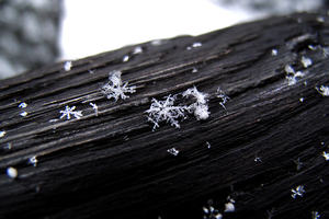 Snow science: What is a snowflake?