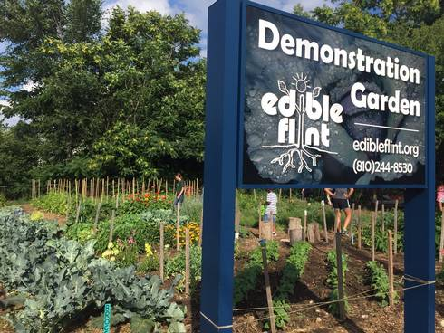 Edible Flint demonstration gardens.