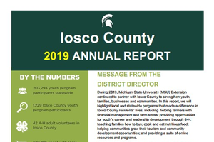 Iosco County Annual Report 2019