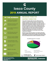 Iosco County Annual Report 2019 Cover