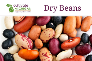 Dry bean tour will give institutional buyers a behind-the-scenes look at Michigan beans