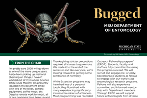Bugged newsletter on entomology during fall/winter 2020