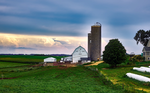 New Beginning Farmers series offered online by MSU Extension