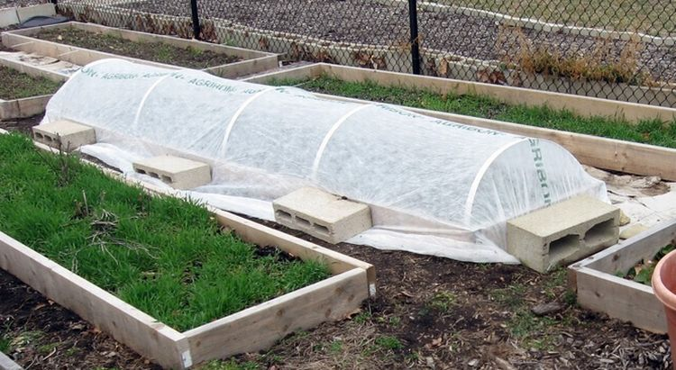 A lightweight row cover secured over a raised bed. Photo credit: Mark the Trigeek, Flickr.com