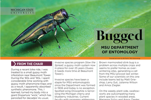 Bugged summer 2018 issue showcases Entomology news and honors
