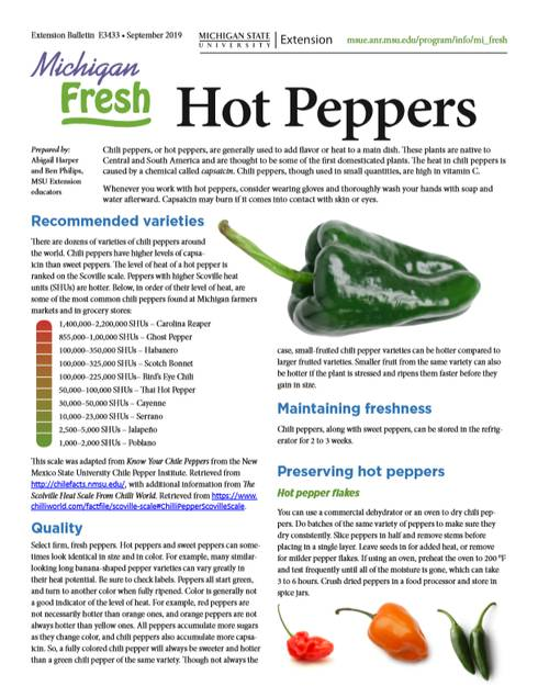 The first page of the fact sheet of hot peppers.