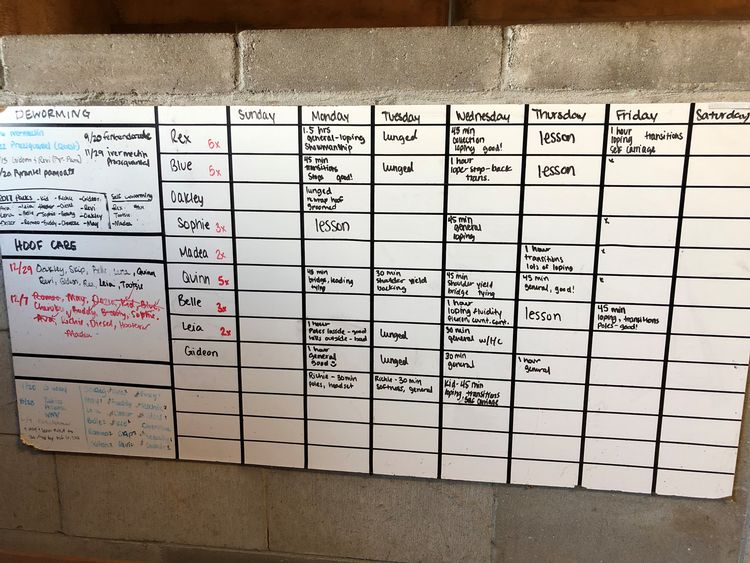 A personalized dry erase board can be a great gift for the horse farm owner. Photo by Karley VanWormer.