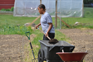 Photo: Youth from the Ingham County Family Center have created and maintain a 4-H community garden. Photo credit: Michelle Lavra