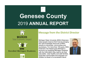 Genesee County Annual Report 2019