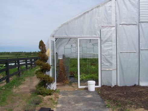 High tunnel production for cut flowers and vegetables. Photo by: MSU